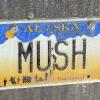 mushplate_lowres