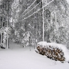 march_snow5_lowres